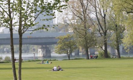 Birsköpfli mit Kindern in Basel auf Family First