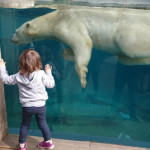Activities with kids ideas on Family First Switzerland