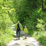 Diemtigtal Wanderweg