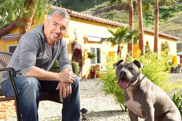 Cesar Millan - Once Upon A Dog