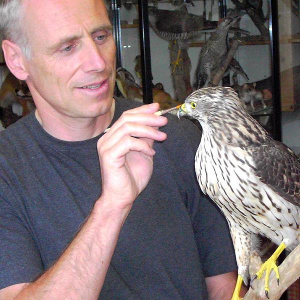 Faszination Vogelwelt