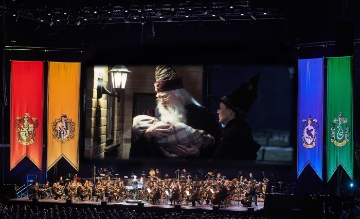 Harry Potter and the philosophers stone in concert
