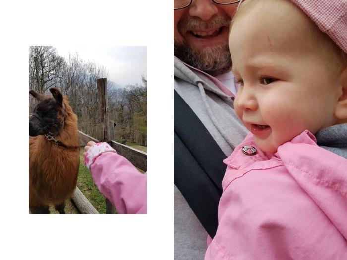 Lama-Trekking mit Kindern